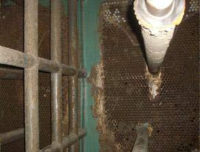 Severe corrosion on heat exchanger's tube sheets